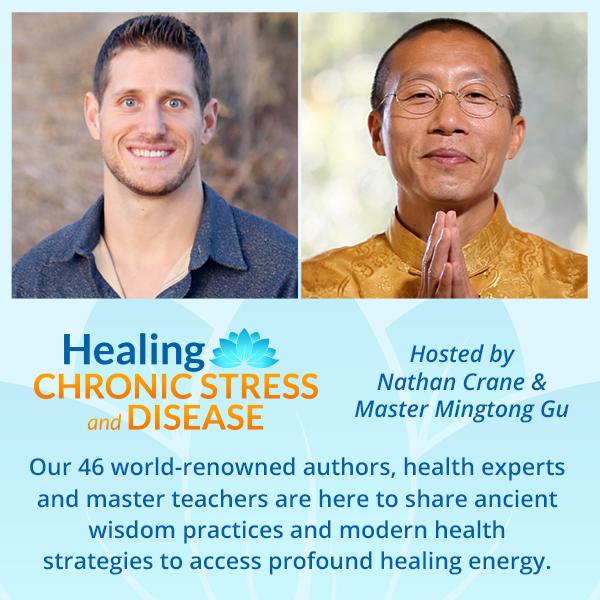 Healing Chronic Stress and Disease Summit