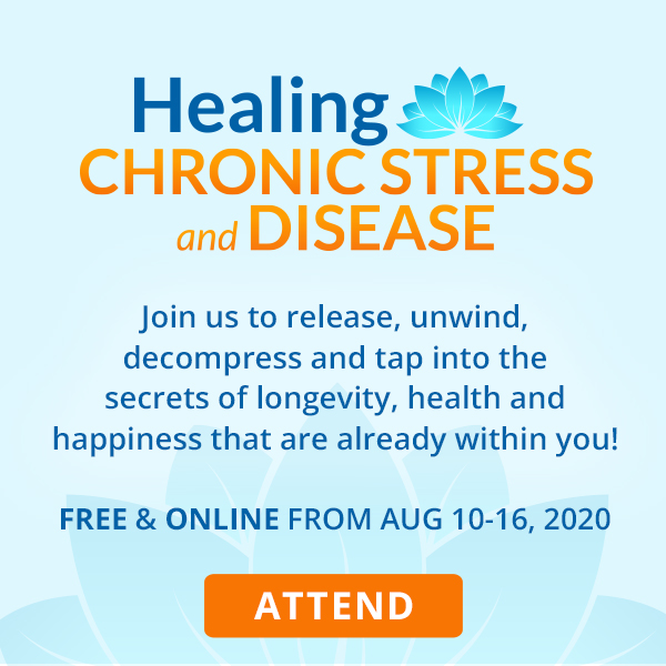 Healing Chronic Stress and Disease Summit