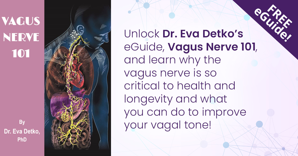 Mind, Body and the Vagus Nerve Connection Summit